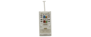 Data Module Cat6 50x25mm